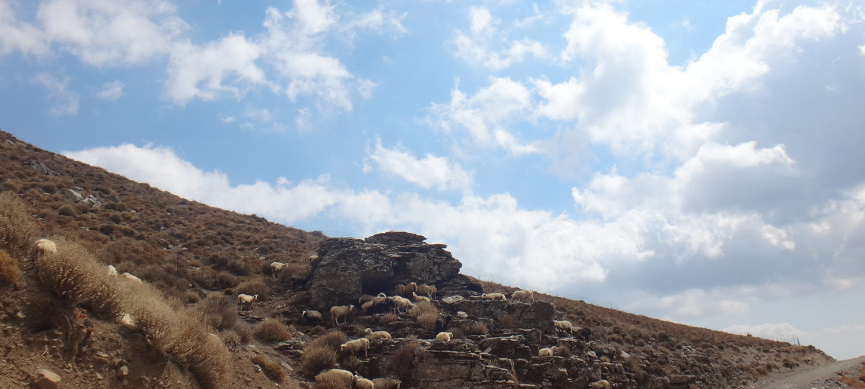 Achilles Crete Tours